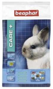 ביהפר גורי ארנבים קייר+
