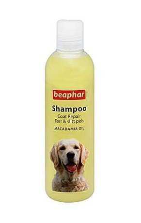 ביהפר שמפו כלבים ניחוח אגוז מקדמיה