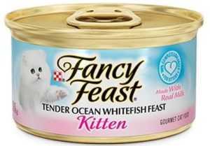 מעדן פנסי פיסט - מרקם נתחים דג אוקיינוס 85 גר' לגורים