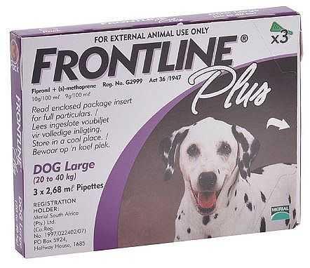 פרונטליין פלוס לכלבים גדולים