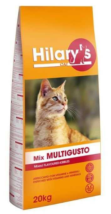 הילרי אוכל לחתולי רחוב