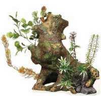 """גזע עץ עם צמחייה XXL דקורציה לאקווריום 24x24 ס""""מ"""