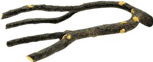 ענף לציפור ליווינג וורלד
