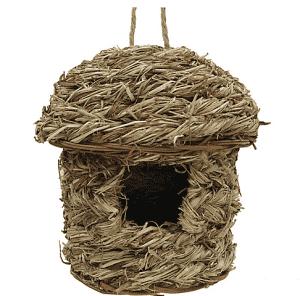 קן הטלה סגור לציפורים קטנות