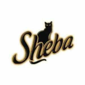 לוגו Sheba שיבא