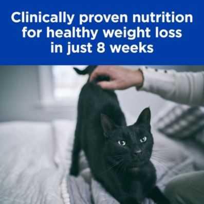 """הילס רפואי r\d לחתול 5 ק""""ג"""