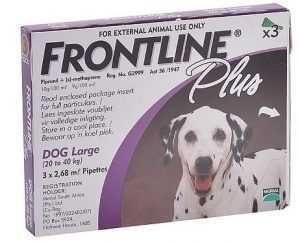 פרונטליין פלוס אמפולה נגד פרעושים לכלב גדול