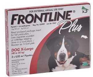 פרונטליין פלוס אמפולה נגד פרעושים לכלב ענק