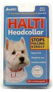 הלטי רתמת ראש לכלב מידה 5