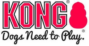 לוגו kong