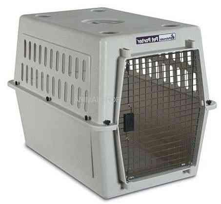 """כלוב הטסה פטמייט 6 L לכלב אורך 91 ס""""מ"""
