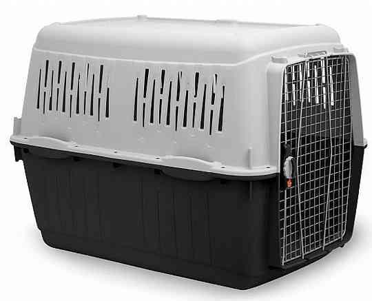 """כלוב טיסה לכלב בארקו 8 - BRACCO אורך 118 ס""""מ"""
