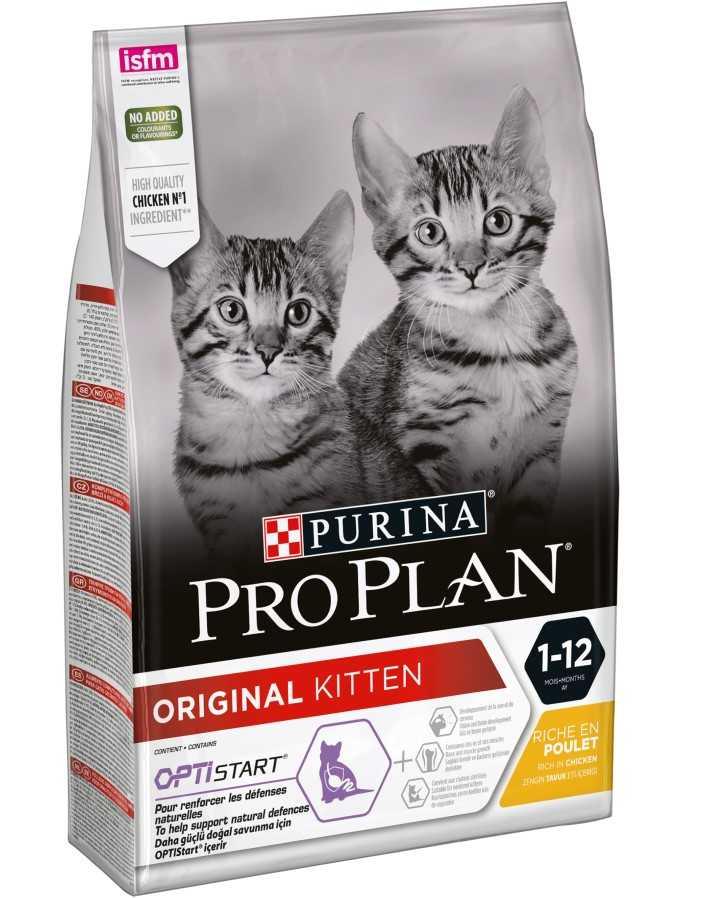 """פרו פלאן - לגור חתולים 3 ק""""ג"""