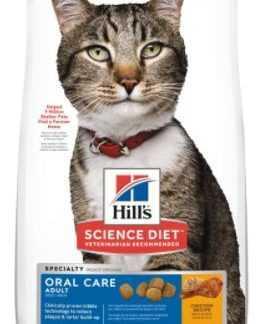 "הילס דנטלי לחתול 2 ק""ג"
