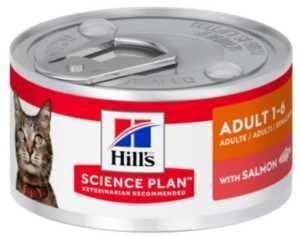 הילס מעדן סלמון לחתול 82 גר'