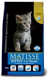 מאטיס - גורי חתולים ומניקות