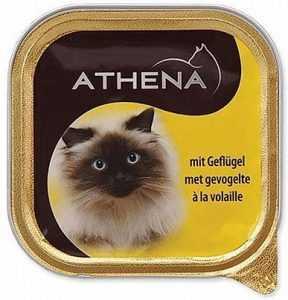 שימורים לחתול אתנה עוף 100 גר׳