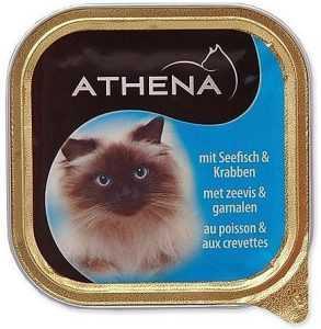 שימורים לחתול אתנה דגים 100 גר׳