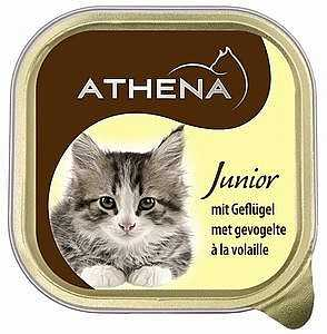שימורים לגורי חתולים אתנה עוף 100 גר׳