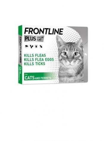 חומרי הדברה לחתולים