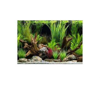 רקע לאקווריום דגים