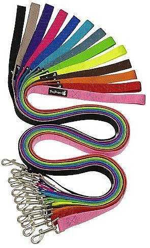"""רצועת ניילון לכלב במגוון צבעים מידה XS רוחב 10 מ""""מ"""