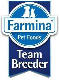 טים ברידר - Team Breeder