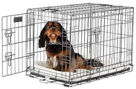 כלוב אילוף לכלב במבצע