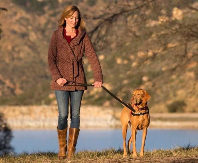 הלטי רתמת ראש נגד משיכות לכלב במגוון מידות