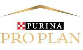 פרו פלאן - PRO PLAN